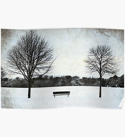 The empty bench Poster