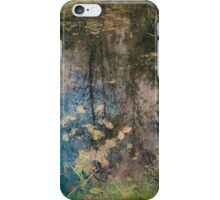 Fish Trap Creek iPhone Case/Skin