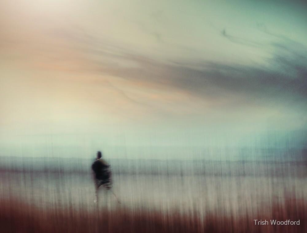 Taking Flight.... by Trish Woodford