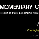 Momentary Collective - An exhibition by Roberts Birze