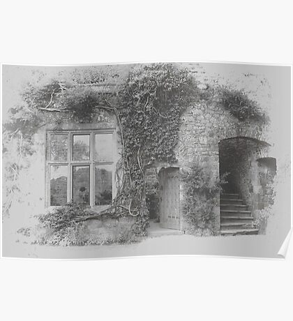 Ivy round the Window Poster