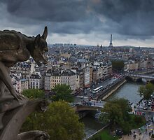 Parisian Views by Andrew Dickman