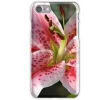 Pink Lily iPhone/iPad Case iPhone Case/Skin
