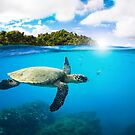Tropical Paradise by Nicklas Gustafsson