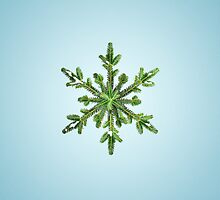 Snowy Pine Snowflake iPad Case by Boriana Giormova