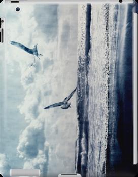 Freedom by Anne Staub