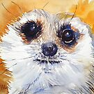 Simples! by Ruth S Harris