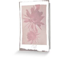 12th Doctor Negative Flower T-Shirt Greeting Card