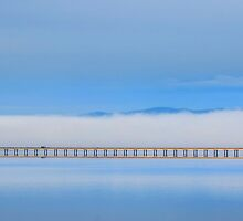 Cromarty Bridge by Donald  Stewart