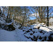Snow bridge 3 Photographic Print