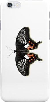 Smartphone Case - Butterfly - Mormon by Mark Podger