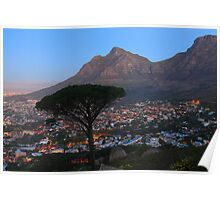 A Tree, a Mountain and a City. Poster