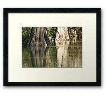 Nature Color's Framed Print