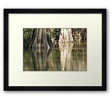 Nature Color's Framed Print