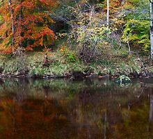 River Wharfe Reflections by Nick Atkin