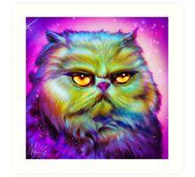 LouLou, persian cat Art Print
