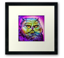 LouLou, persian cat Framed Print