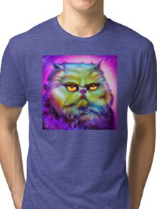 LouLou, persian cat Tri-blend T-Shirt