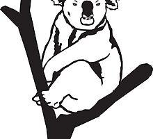 Koala by Port-Stevens