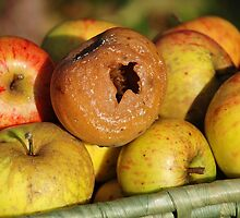 Bad apple in the basket by David Fowler