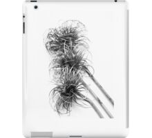 Nature abstract ipad case iPad Case/Skin