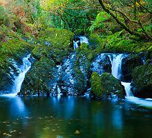Autumn Waterfall & Pool  by Michael  Browne