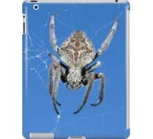 Into the web - iPad case iPad Case/Skin
