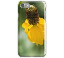Yellow Ratibida columnifera iPhone Case/Skin