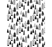 Forest BW - by Andrea Lauren  Photographic Print