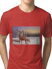 Winter Sunrise Tri-blend T-Shirt
