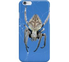 Into the web - iPhone case iPhone Case/Skin