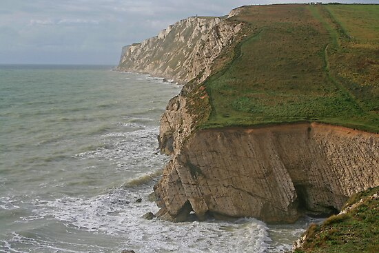 Freshwater Bay by RedHillDigital