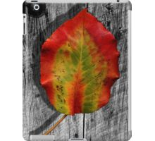 Leaf on Barnwood iPad Case/Skin