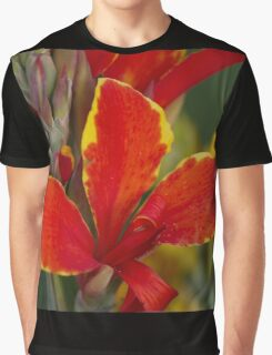 lily in spring Graphic T-Shirt