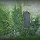 Pevensey Castle (3) .. The Lower Entry. by Larry Davis