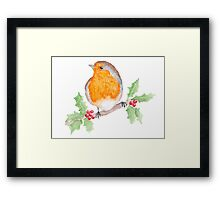 Holly Robin Framed Print
