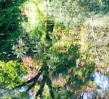 Monet at Stourhead? by ColinKemp
