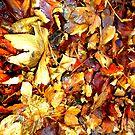 Autumn Leaves iPad Case by Fara