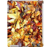 Autumn Leaves iPad Case iPad Case/Skin