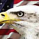 Old Glory - American Bald Eagle by Sharon Cummings