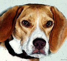Beagle Dog Art - Eagle Boy by Sharon Cummings