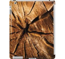 Cracked Wood iPad Case/Skin