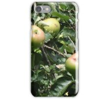 Apples on Tree after Rain iPhone Case/Skin