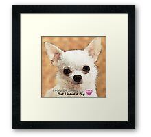 Chihuahua Dog Art - Big Heart Framed Print