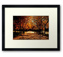 Olive Fall Framed Print