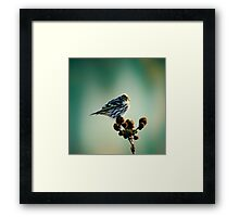 Illusions.... Framed Print