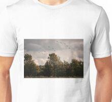 RAF Balbo Unisex T-Shirt