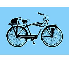 Badger On A Bicycle Card & Prints Photographic Print