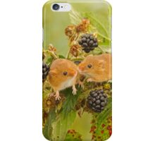 Harvest mice on blackberry bush iPhone Case/Skin