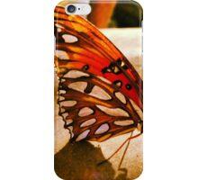 Backyard Butterfly 2 iPhone Case/Skin